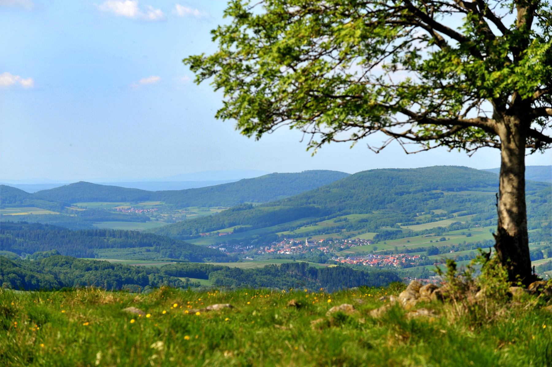 Sommer In Hessen